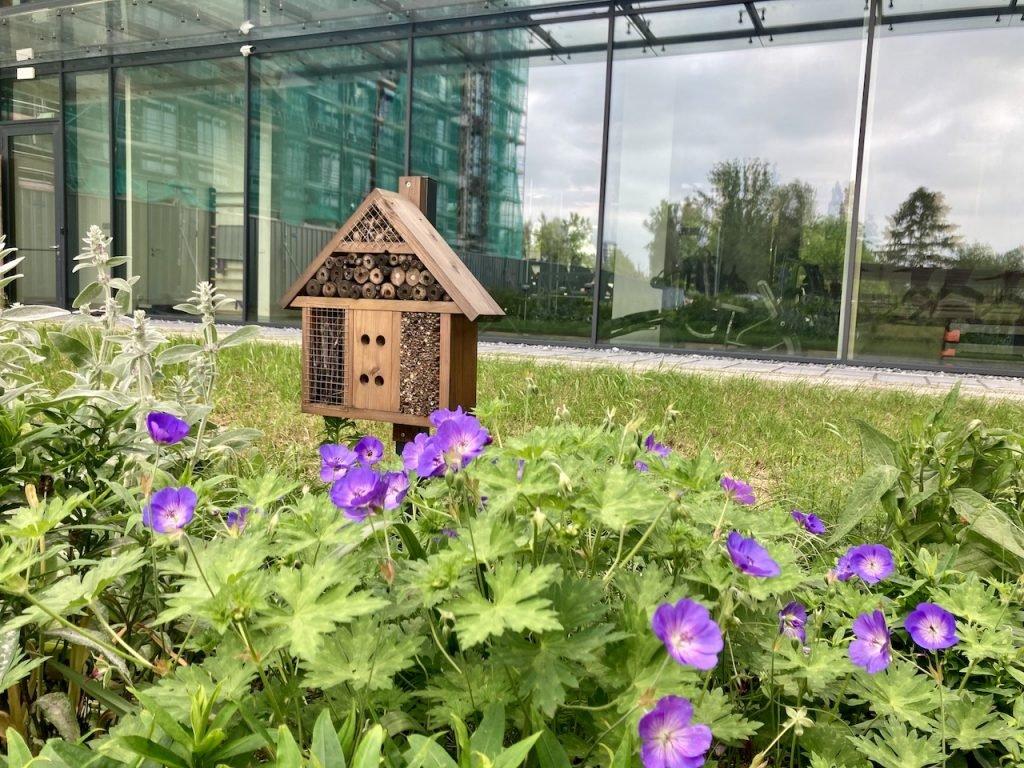 Domek dla owadów, Podium Park Kraków, fot. ZIDA