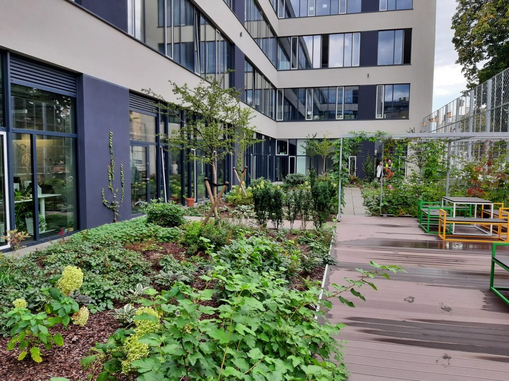 Green roof with the intensive substrate
