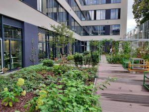 Dach zielony w uprawie intensywnej